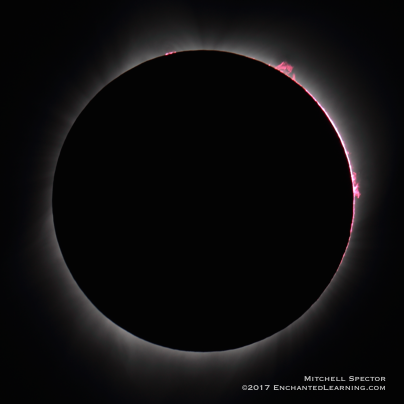 Prominences visible during totality