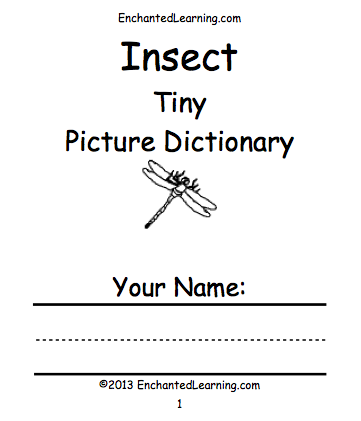 Insect's Book Cover