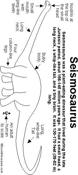 Seismosaurus Printout Enchantedlearning Com