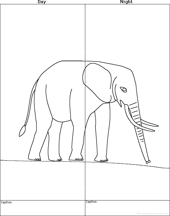 Indian Elephant Line Drawing Indian Elephant Line D...