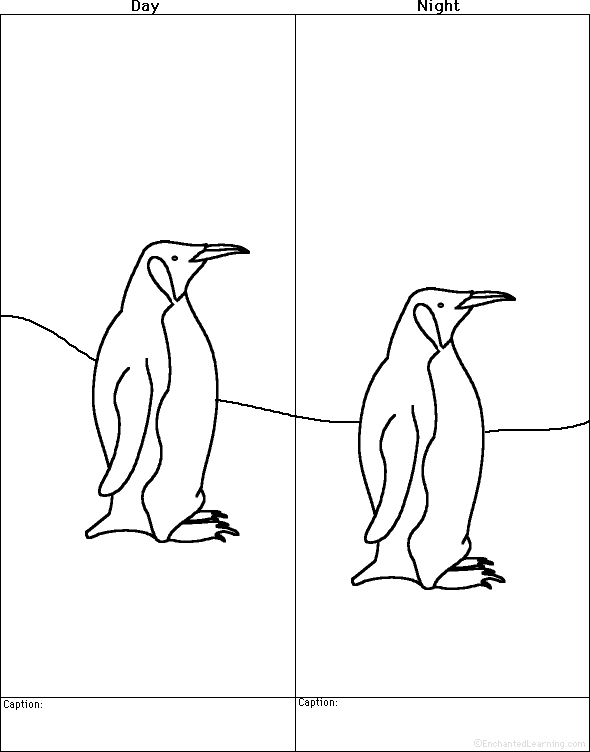 Penguins at EnchantedLearning – Penguin Worksheets for Kindergarten