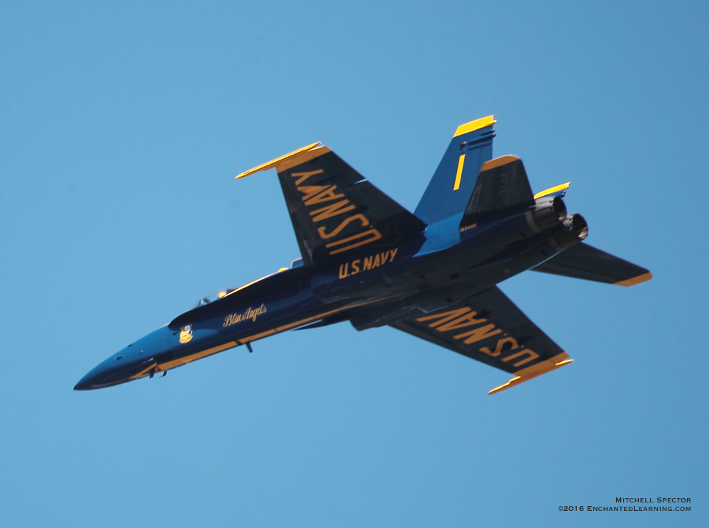 Blue Angel Practicing