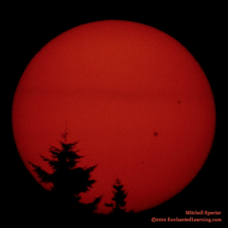 Sunspots at Sunrise
