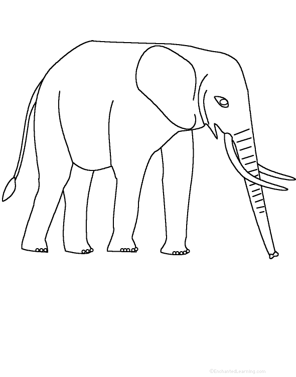 photograph relating to Printable Elephant identify Adjectives Detailing An Elephant - Printable Worksheet