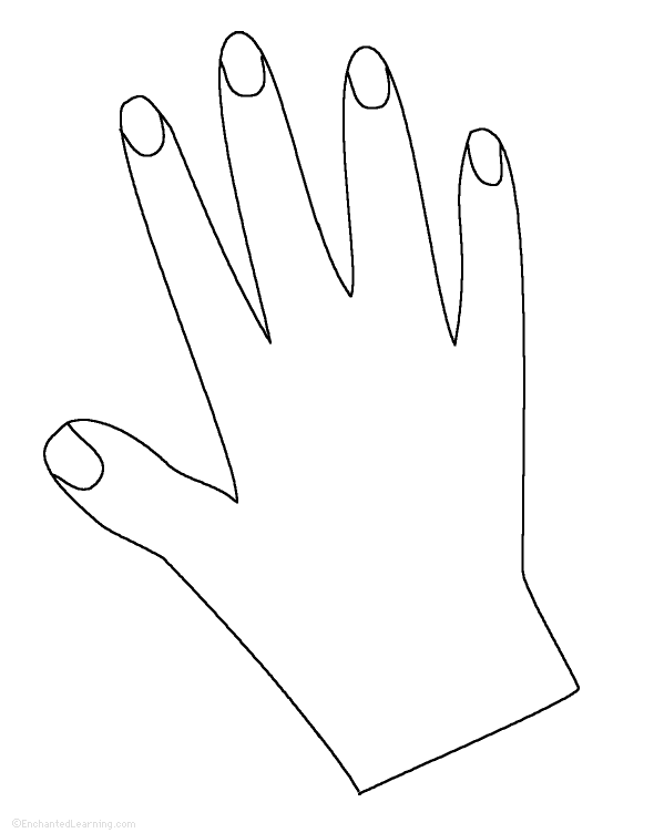 photo regarding Hand Printable named Hand Tracing/Reducing Template: