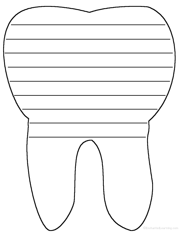 Tooth anatomy enchantedlearning shape poem ccuart Images
