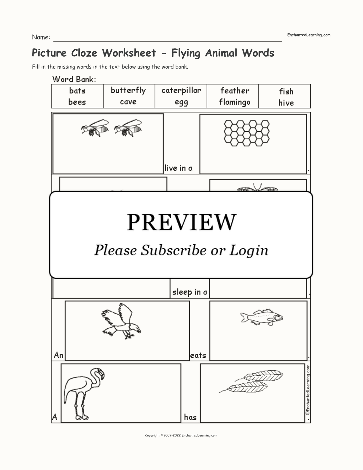 Picture Cloze Worksheet - Flying Animal Words interactive worksheet page 1