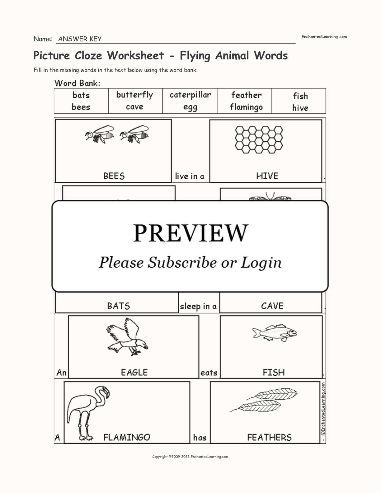 Picture Cloze Worksheet - Flying Animal Words interactive worksheet page 2