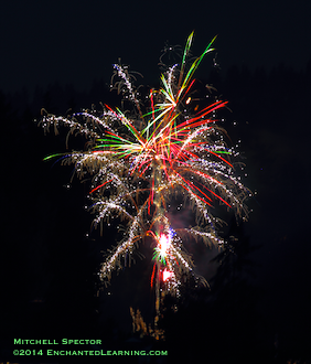 Fireworks - Tinsel and Light