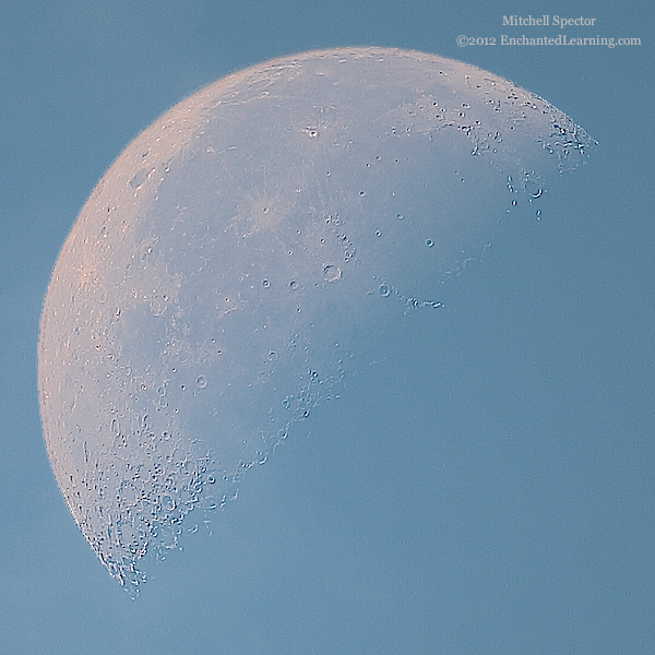Last-Quarter Moon in the Daylight