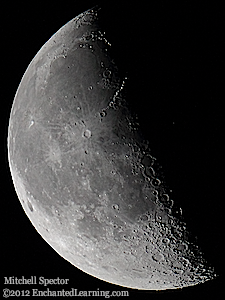Last Quarter Moon in the Night Sky