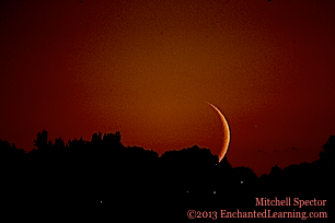 Crescent Moon Setting over Seattle