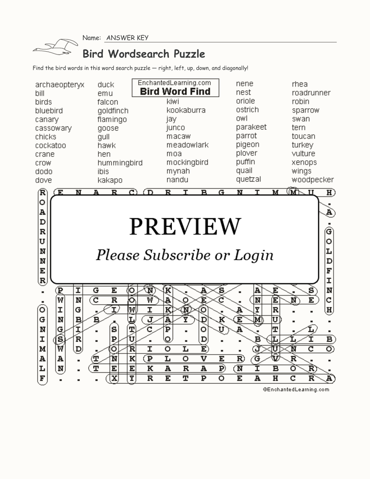 Bird Wordsearch Puzzle interactive worksheet page 2